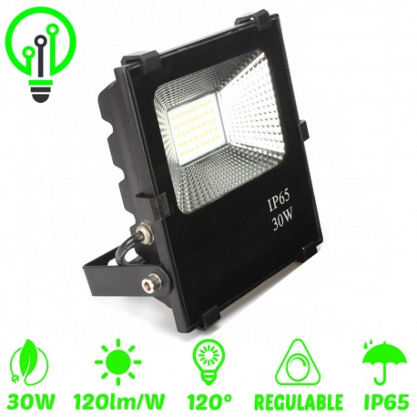 Proyector LED exterior 30W IP65 PROFESIONAL