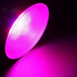 Bombilla LED E27 12W GROWLED PAR38