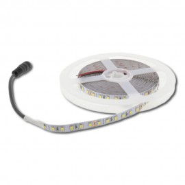 Tira LED SMD 2835 120 LEDS/METRO DC24V IP20